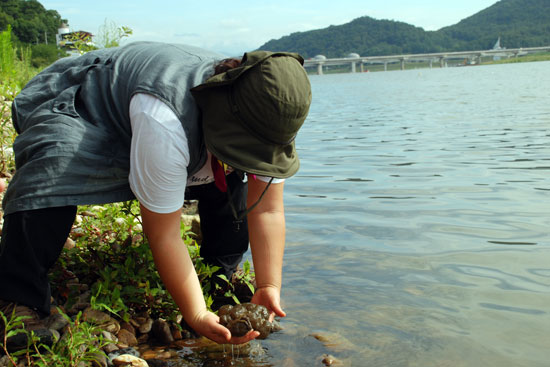 남한강 뒤덮은 큰빗이끼벌레 호수화 증거 3