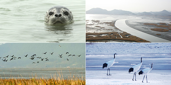 [보호지역 더하기] 우리나라 주요 보호지역의 종류1