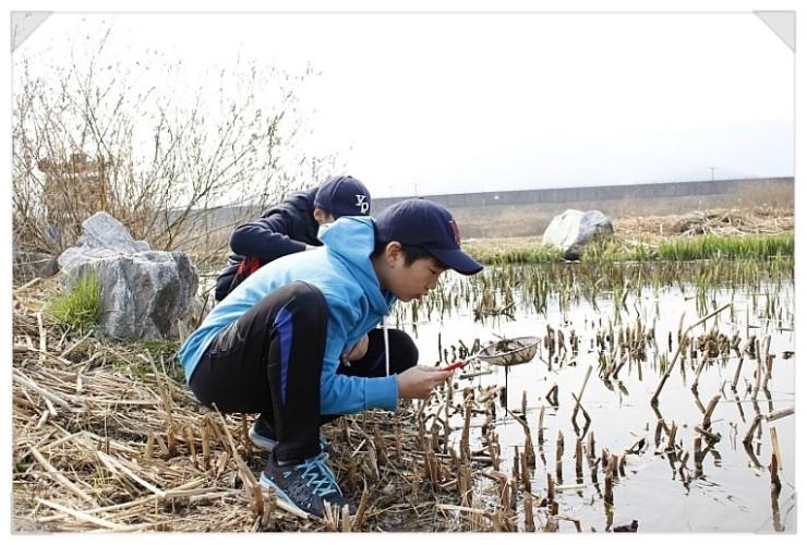 [성남] 청소년 수서곤충모니터링단, 탄천습지생태원의 생물들3