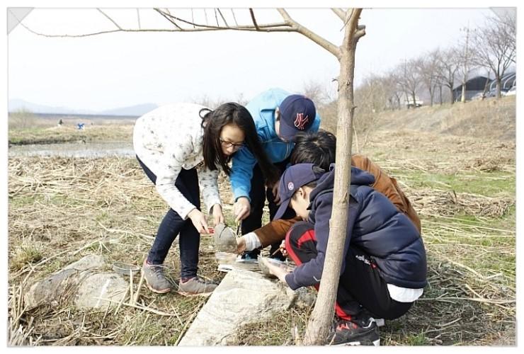 [성남] 청소년 수서곤충모니터링단, 탄천습지생태원의 생물들4