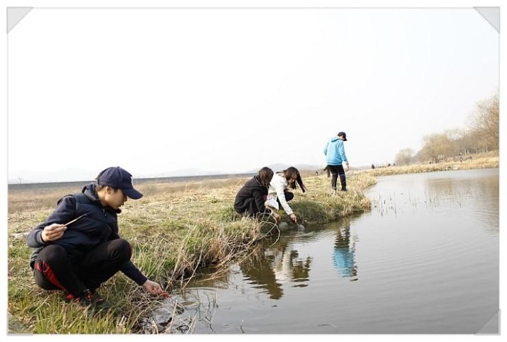 [성남] 청소년 수서곤충모니터링단, 탄천습지생태원의 생물들5
