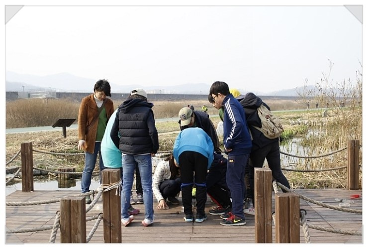 [성남] 청소년 수서곤충모니터링단, 탄천습지생태원의 생물들6