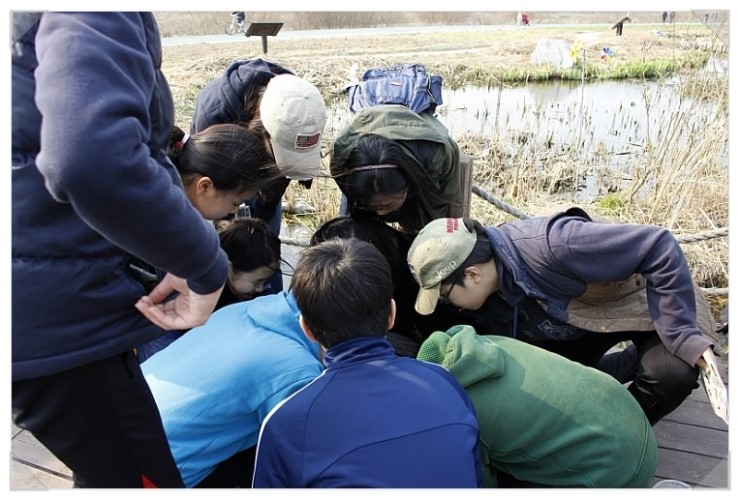 [성남] 청소년 수서곤충모니터링단, 탄천습지생태원의 생물들7