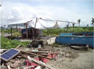 태풍 하이옌의 악몽에서 벗어나지 못한 필리핀, 그러나 희망은 싹트고 있다 17-2