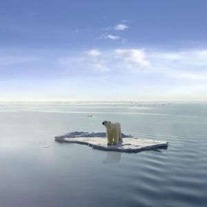 """환경의 날, """"지구는 섬, 인간 존엄 지킬 수 있어야""""  2"""