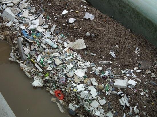 4대강 쓰레기보의 탄생4