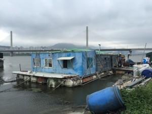 P20150720_낙동강 어촌계
