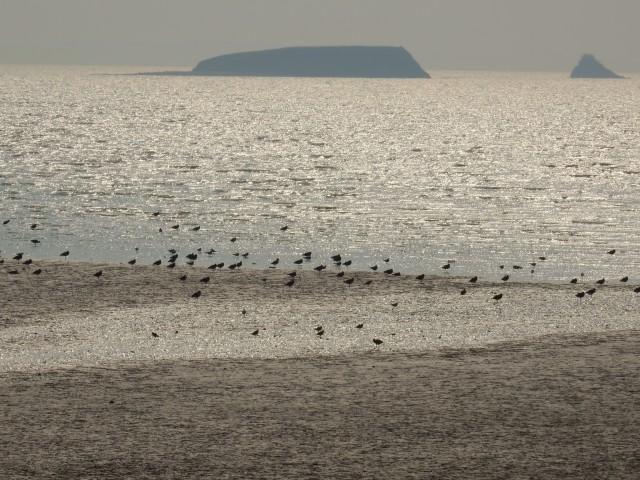 50년간 미군 폭격기의 사격장으로 이용되었던 화성시 우정읍 매향리의 농섬. 이젠 그 앞에서 사람과 자연이 더불어 평화롭게 살아간다. ⓒ정한철