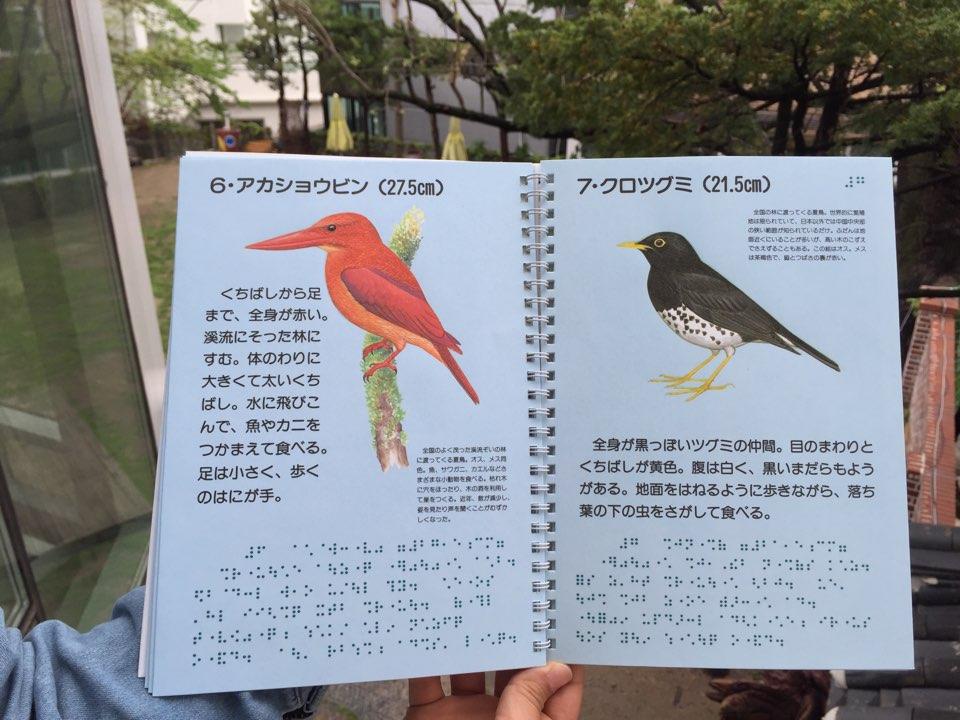 (일본사례)만지는 도감, 새, 1992, 일본야조협회 (2)