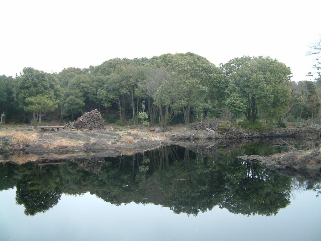 ▲ 먼물깍. 선흘곶안에 있는 먼물깍(습지).숲안에 습지가 형성된 경우는 드물뿐더러 특히, 곶자왈안에 습지가 형성된 것은 도내 곶자왈에서도 매우 드물다. 선흘곶자왈 안에는 먼물깍뿐만 아니라 여러 개의 습지가 곳곳에 흩어져있다. ⓒ제주환경운동연합
