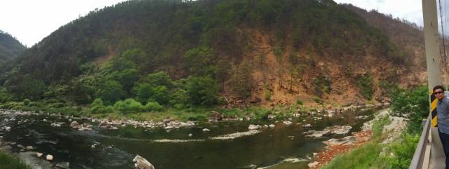 황산으로 황폐화된 산림 ⓒ환경운동연합