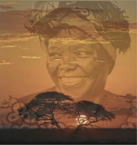 '나무들의 어머니' 노벨평화상 수상자 왕가리 마타이 Wangari Maathai