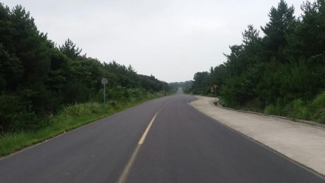 ▲도로사진. 10여년전, 묘산봉관광지구 사업을 위한 도로개발을 하면서 드넓은 선흘곶자왈을 반으로 쪼개 놓았다.사진 오른편이 세인트포골프장이고 왼쪽이 사파리월드 사업예정지이다. ⓒ제주환경운동연합