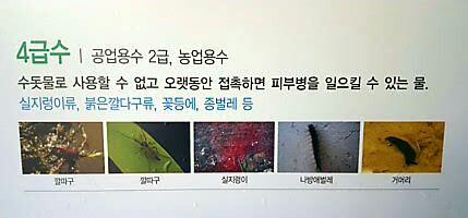 4대강청문회11-2