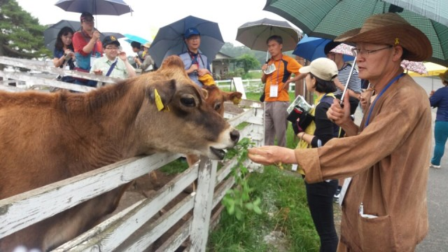 ▲ keep농장. 일본의 공익재단법인 KEEP가 운영하는 친환경축산 농장. 소와 교감할 수 있는 다양한 프로그램을 만들어 운영하고 있다.ⓒ제주환경운동연합