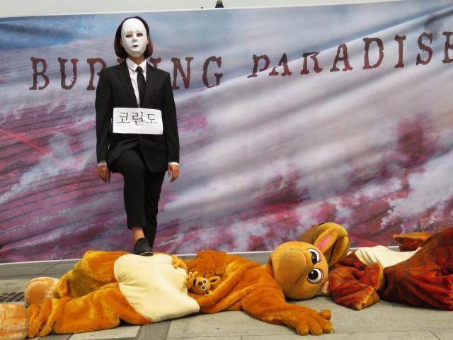 """9월 8일 환경연합과 국제환경연구 캠페인 단체 마이티는 -""""Burning Paradise"""" 한국계 기업의 인도네시아 열대우림 파괴 중단 촉구-를 주제로 퍼포먼스를 진행했다. ⓒ환경운동연합"""
