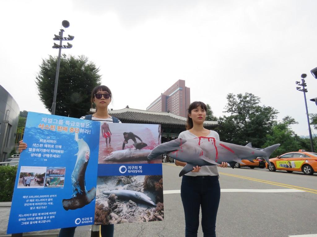 환경운동연합은 9월 1일 신라호텔 앞에서 '왕후의 식탁 야만의 식탐' 상어지느러미 요리 판매중단 캠페인을 벌였다.ⓒ환경운동연합