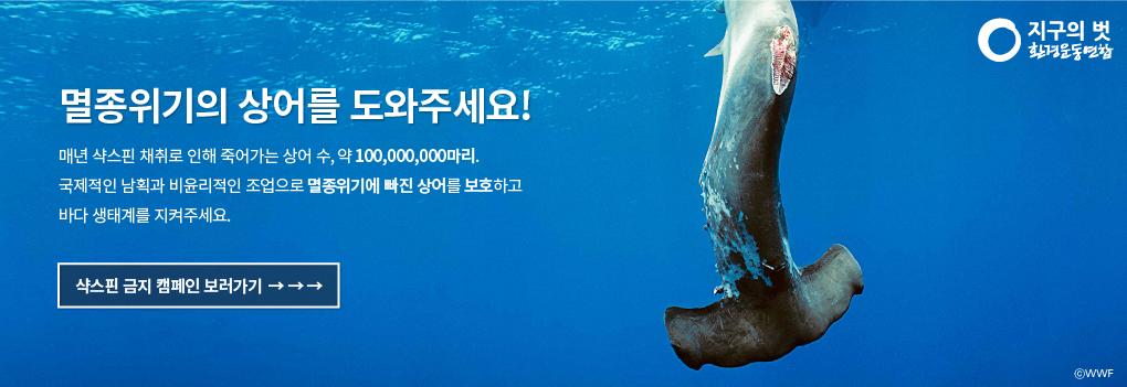 샥스핀금지캠페인_메인배너
