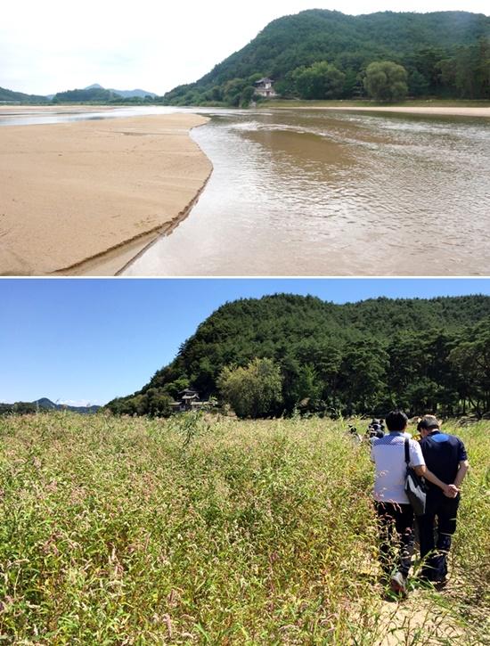 국가명승 선몽대 일대가 이렇게 변했다. 위가 2009년, 아래가 2015년도의 모습이다. 4대강사업과 영주댐 공사 탓이다. ⓒ 박용훈/정수근