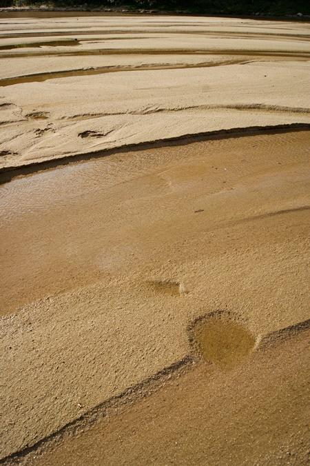 내성천의 모래는 수질을 정화시키는 중요한 도구다. 모래의 강 내성천이 1급수를 유지하는 이유다. 따라서 물과 모래가 흐르지 않는 내성천은 녹조라떼를 만들 뿐이다. 내성천은 흘러야 한다.ⓒ정수근