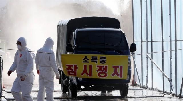 천안 닭·오리농장 3곳 AI 의심 신고가 들어온 지난 15일 천안 삼거리에 설치된 검점 소독시설에서 방역 관계자들이 차량 소독을 하고 있다.ⓒ 연합뉴스