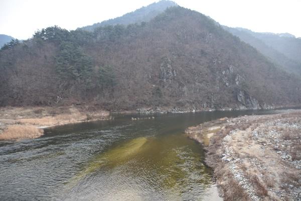 이것이 영주댐에서 바로 흘러나온 강물이다. 이런 물로 어떻게 낙동강의 수질을 개선시킬 수 있을까? ⓒ 정수근