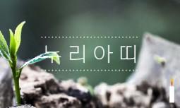 [누리아띠 제642호] 16차 범국민행동의날, 박근혜 즉각 퇴장을 외친 80만의 레드카드