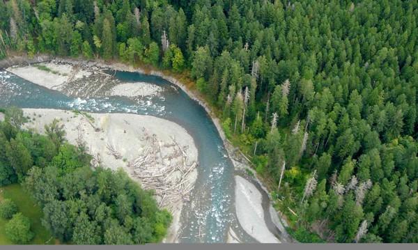 댐 해체 후 회복된 엘와강-2016