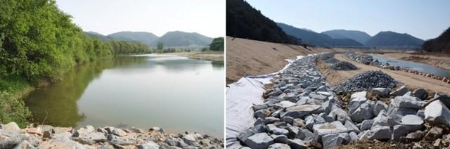 경상북도 내성천 재해예방사업 전후의 내성천 모습