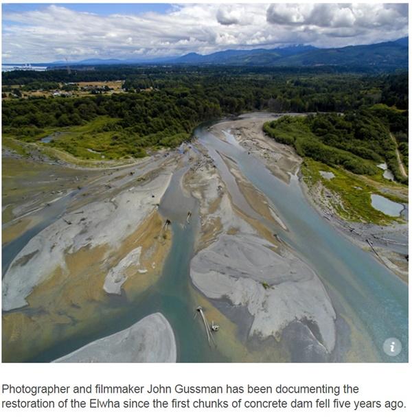 미국의 엘와강 댐이 철거된 이후 하구의 생태계도 살아났다 ⓒ Amerivan Rivers 화면 갈무리