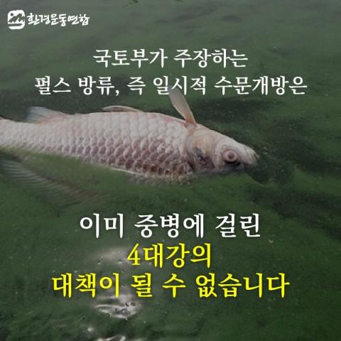 세계 물의날-11