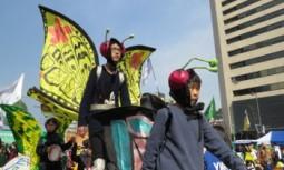 [영상] 후쿠시마 원전사고 6주기 행사 '나비행진'