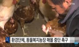 [현장기고] 익산 참사랑 동물복지농장의 '예방적' 살처분을 중단하라!