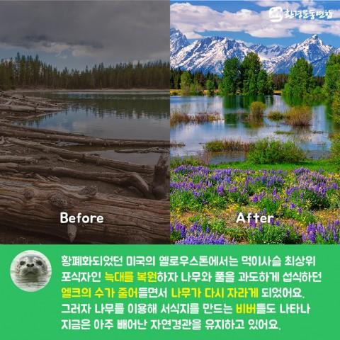 생물다양성의날_카드뉴스_09
