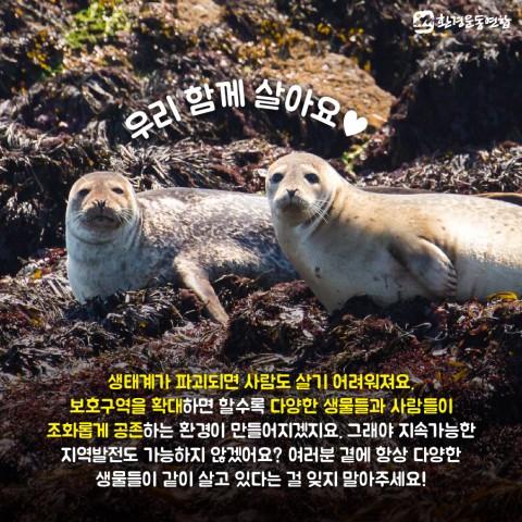 생물다양성의날_카드뉴스_11