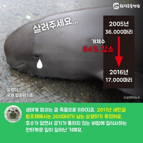 생물다양성의날_카드뉴스_Artboard 22 copy 2