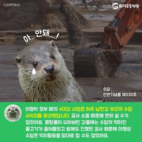 생물다양성의날_카드뉴스_Artboard 22 copy 3