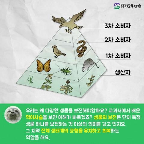 생물다양성의날_카드뉴스_Artboard_22_copy_3