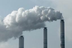 우리를 위협하는 석탄발전소, 백지화를 촉구합니다