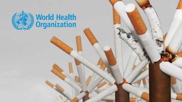 sWHO 담배 보고서