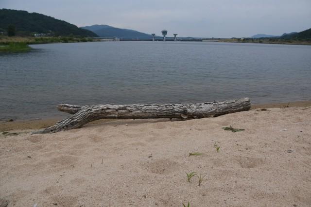 모래톱을 원하나? 호수를 원하나? ⓒ 대구환경운동연합 정수근