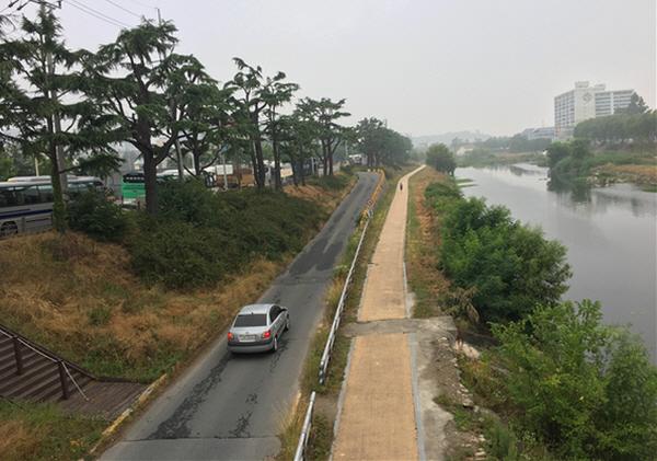 수달 서식지 좌안으로 하상도로가 있다. 수달은 물론 사람들도 불편하다.