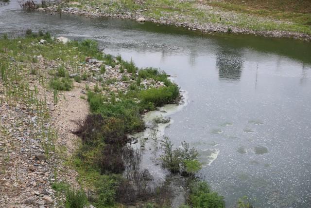 ▲ 장마로 물이 조금 불어났지만 영주댐 아래 내성천은 여전히 유속이 느리다 보니 녹조와 거품 등으로 오염돼 있다. ⓒ 윤연정