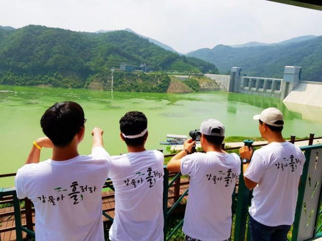 녹조라떼 배양소가 된 영주댐. 온통 초록이다. ⓒ 김종술