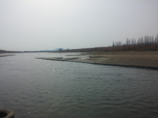 승촌보 개방후 모습 2017년 3월 16일 ⓒ광주환경운동연합 최지현