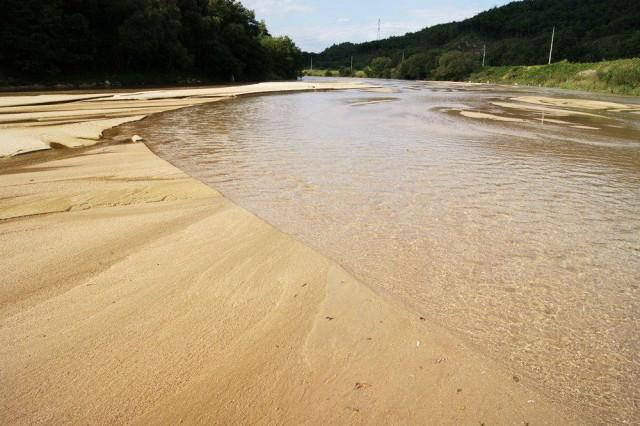비록 상류에 오염원이 존재하더라도 내성천의 풍부한 모래톱을 거쳐오면서 내성천의 수질은 1급수를 유지하게 된다. ⓒ 대구환경운동연합 정수근