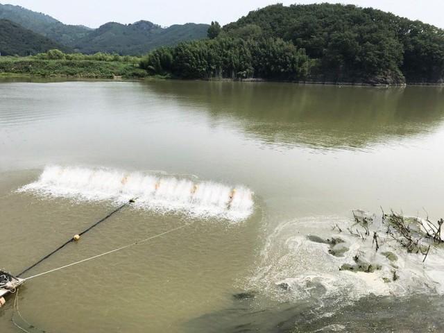 회전식 수차가 열심히 돌아가고 있다. 녹조를 막기 위해 수자원공사가 설치한 것이다 ⓒ 대구환경연합 정수근