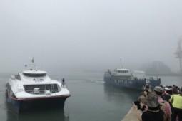 [홍선기의 섬이야기] <섬의 날> 지정과 여객선 공영제 구현을 촉구한다