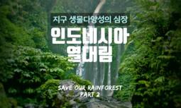 [카드뉴스] 지구 생물다양성의 심장, 인도네시아 열대림