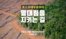 [카드뉴스] 포스코대우로부터 열대림을 지키는 길